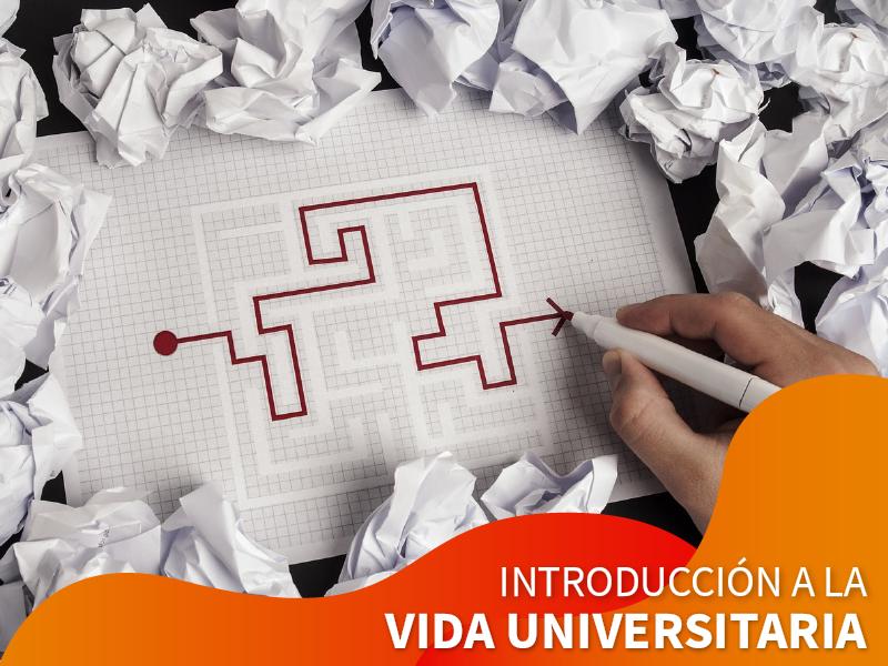 Introducción a la Vida Universitaria